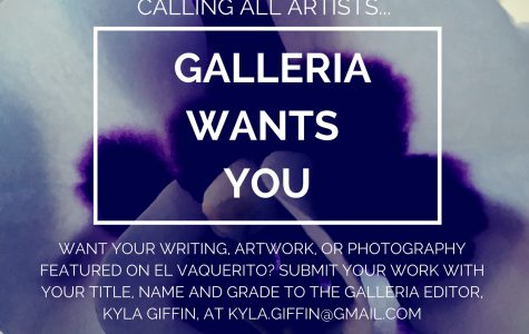 Calling All Artists! Submit to Galleria!