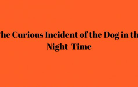 The Curious Incident of the Dog in the Night-Time Invites You Into the Complex Mind of a Boy with Autism