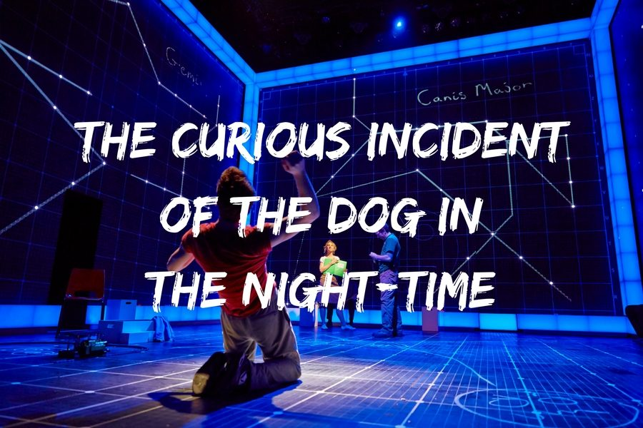 """""""The Curious Incident of the Dog in the Night-Time"""" Comes to LHS"""
