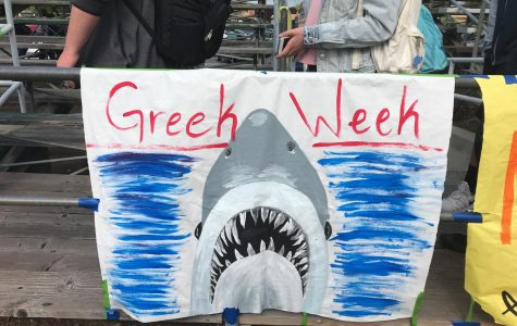 Shark Week Raises $750 For Pennies for Patients