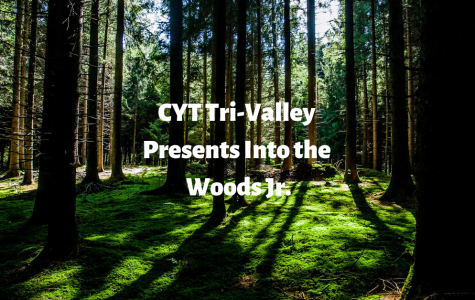 CYT Into the Woods Jr. Review
