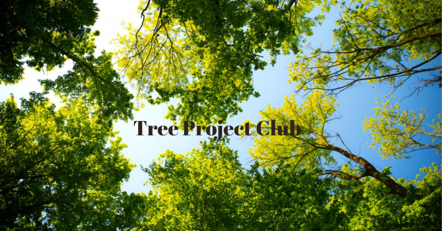 Tree Project Club Aims to Beautify Livermore