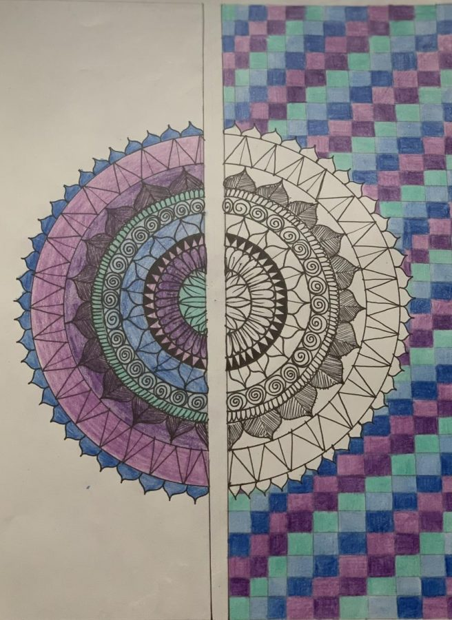 Using+the+same+colors+on+either+sides+of+the+drawing%2C+Patel%27s+work+has+both+unity+and+contrast.