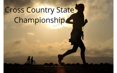 Speed Demon Valenton Races In State Cross Country Championships