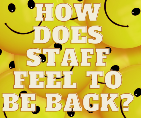 How does staff feel to be back at regular school post pandemic